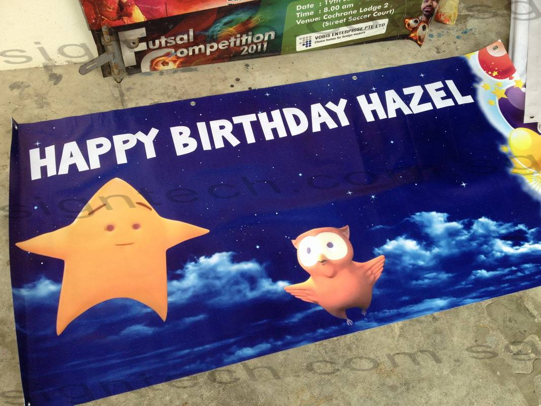 Twinkle little star birthday banner